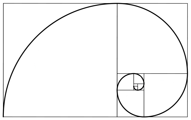 Diagram Showing the Design to the Golden Ratio! very similar to the Fibonacci Sequence